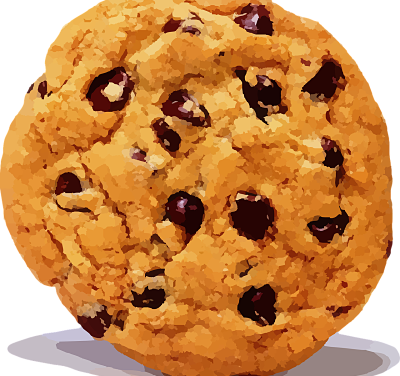 Utilisation des cookies informatiques